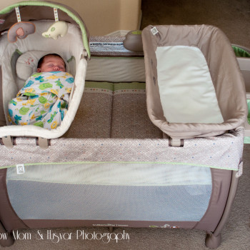 ingenuity washable playard